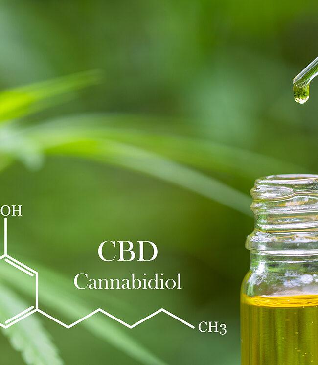 Picture of Pure CBD Oil